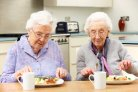 Call for partners: Creating sustainable, healthy, high-protein foods designed for elderly