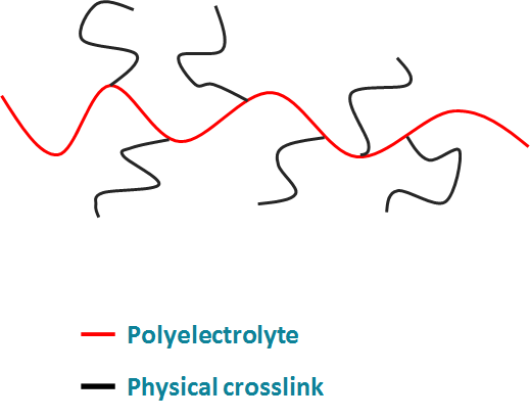 figure 2 - Graft copolymer structure