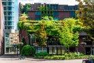 kansen voor biodiversiteit in de stad