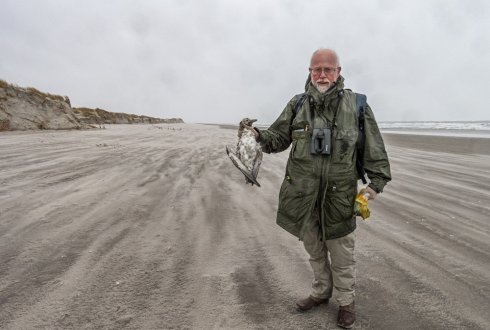 Dutch Wadden society looks back at the ZOE container incident