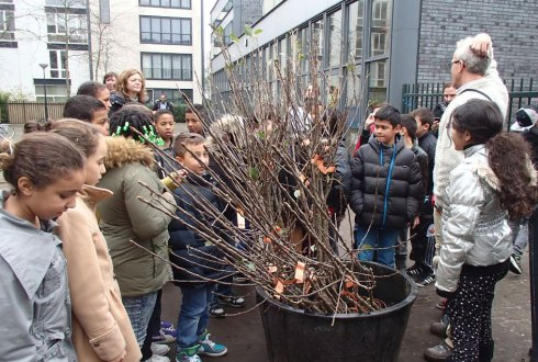 e-Newsletter Plant Life Wageningen UR - dec 2015