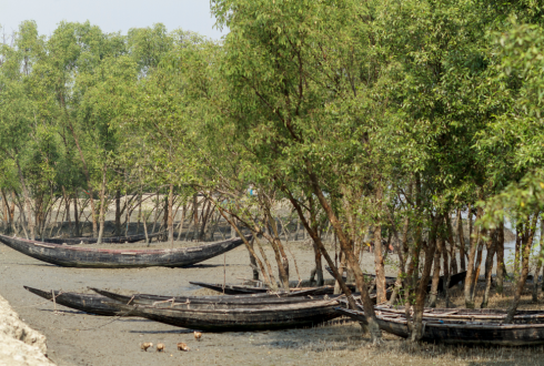 Impacts of climate change on coastal ecosystems of Bangladesh