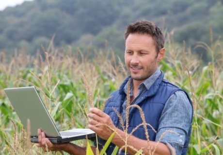 'Virtual adviser' shows farmers and foresters the path to innovation