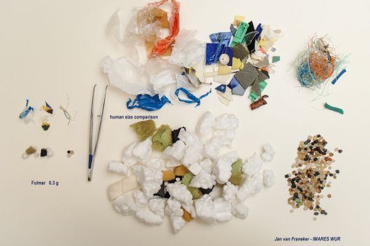 Translation to a human perspective To the left of the tweezers is the average quantity of plastic in stomachs of fulmars in the North Sea (0.31 gram plastic in different categories); to the right of the tweezers, this same quantity has been translated to represent the stomach content of a fulmar at human body size (31 gram plastic; top row from left to right: sheets, fragments and threadlike plastics with foamed plastics and industrial granular plastics below)