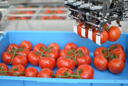 Agro food robotics