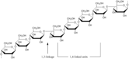 Molecular structure of cereal β-glucan