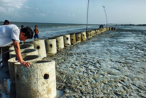 Building an oyster reef to protect the coast of Bangladesh. Project ECOBAS, eco-engineering, building with nature.