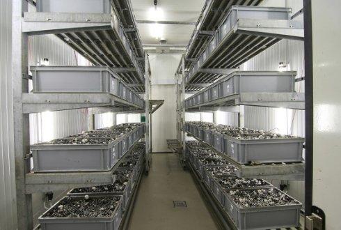 Mushroom Cultivation Facilities Wur
