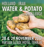 but-water-potato-challenge-2017-iran.jpg