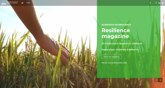 20 stories about research on resilience