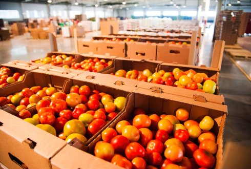 Understanding the influence of context characteristics, logistics control and quality control on postharvest losses. A case study of Zimbabwean tomato supply chains