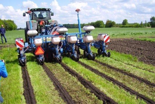 Effect grondbewerkingsmethoden en verschillende groenbemesterstrategieën in meerjarige maïsproef