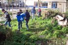 Green schoolyards