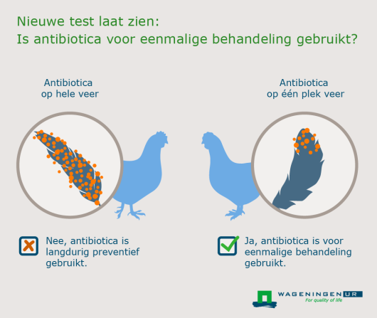 Wageningen UR_Antibiotica_Infographic_Nederlands_Website_20151217.png