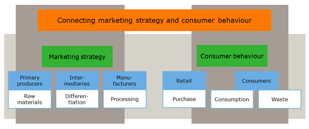 Connecting Marketing Strategy and Consumer Behaviour