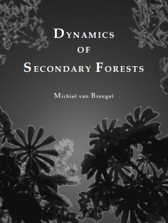 DynamicsSecondaryForests