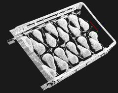3D scan of pears to bring robot to product for precision measurement per pear