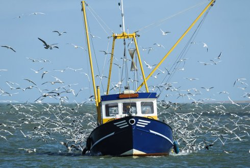 Less waste in the sea because of a behavioural change in fishermen