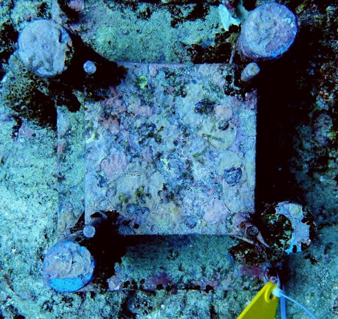 Autonomous Reef Monitoring Structure in the Pacific. Photo: M. Streekstra.