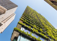 Nature Based Solutions for Climate Resilient Cities