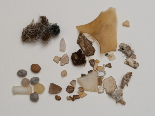 Plastics from a fulmar stomach with industrial granules (lower left) and threadlike (top left) and a mix of fragmented, sheet-like and foamed (right) consumer plastics