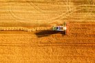 Blockchain: promising applications for sustainable agriculture in a development context