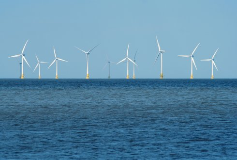 Nature Inclusive Offshore Wind Energy