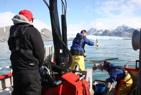 Low organotin contamination of harbour sediment in Svalbard