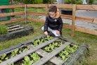 Belang van multifunctionele boer groeit; omzet multifunctionele landbouw bijna verdubbeld