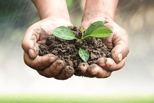 Soil4Life: Sustainable Soil Management