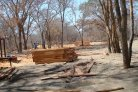 Climate change threatens the Zambian timber industry