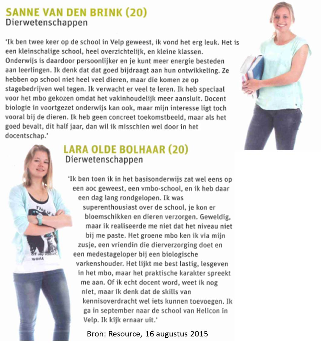 opleiding vmbo docent