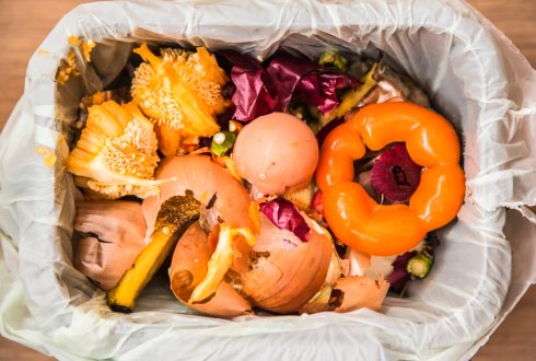 Recycling nutrients from household wastes