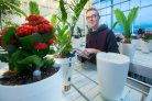 Greenhouse experts develop knowledge for self-watering flower pot
