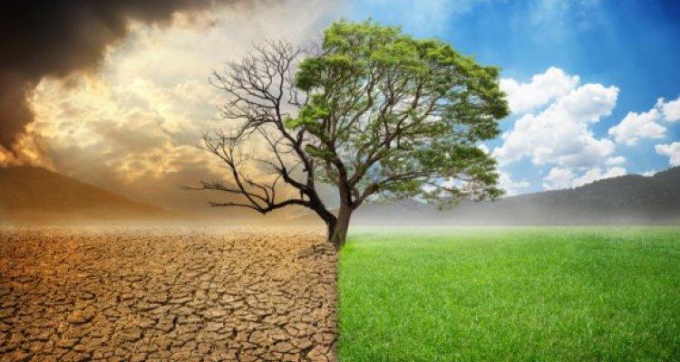 Klimaatverandering en matig alcohol gebruik hebben grote maatschappelijke  gevolgen - WUR