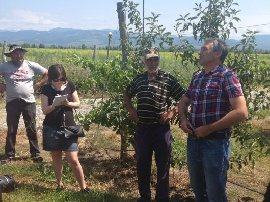 Fruit scientists are organizing training courses to help growers and companies improve the fruit production chain. In 2017 several training courses were organized in Georgia and Romania.