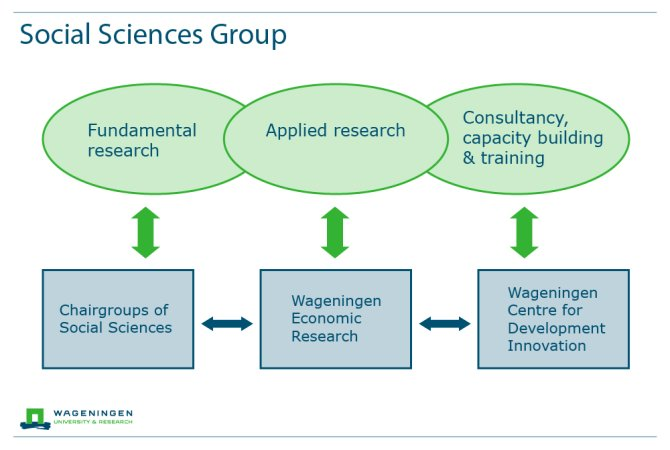 Structure of the Social Sciences Group