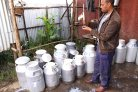 Building Rural Income through Inclusive Dairy Growth in Ethiopia (BRIDGE)