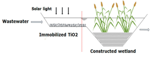 Fig. 1. Schematic overview of drug removal by photodegradation combined with constructed wetlands