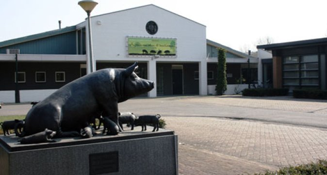 Dutch Swine Innovation Centre closes, research continues