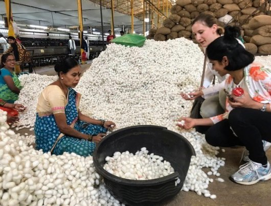 Anjani Nayak and Fabiola Neitzel visit a silk reeling factory during their trip to India (Credit: Team SWAP).