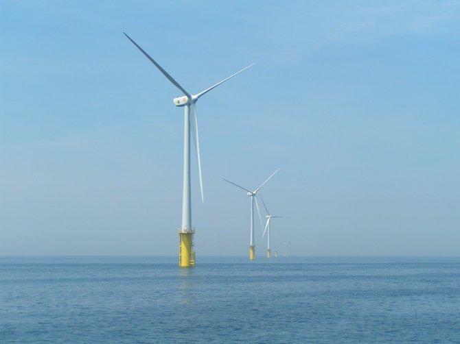 There is an increasing use of wind energy. Not only on land but also at sea, windmills are installed in offshore wind farms at Egmond aan Zee and IJmuiden. Wageningen University & Research examines the effects of wind farms on fish, seabirds and marine mammals.