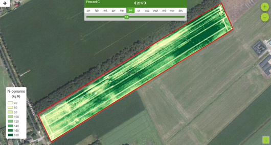 Photo 1: The drone image shows that the uptake of N in varies significantly within the field.