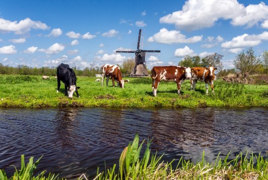 Kringlooplandbouw in Noord-Nederland
