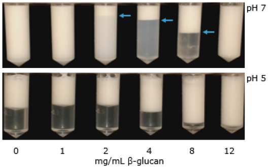 Macroscopic phase stability of emulsions containing 0-12 mg/mL β-glucan after 7 days.