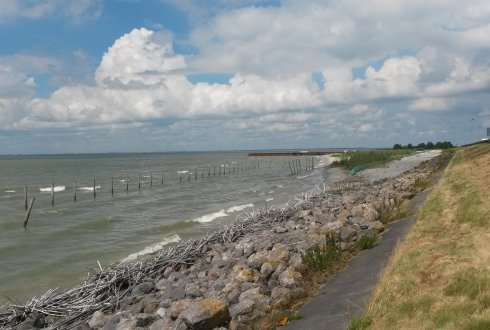 IJsselmeer region: water management, nature and economic development