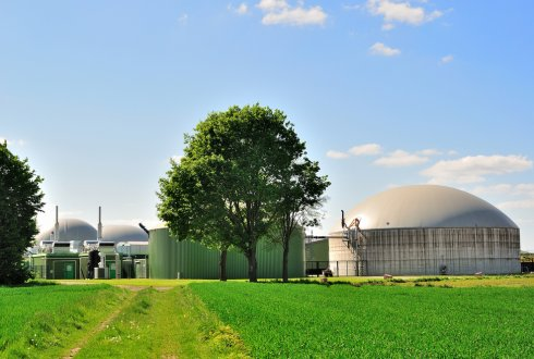 SCOPE report on bioenergy and sustainability