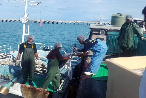 Kiribati tuna fishery loading