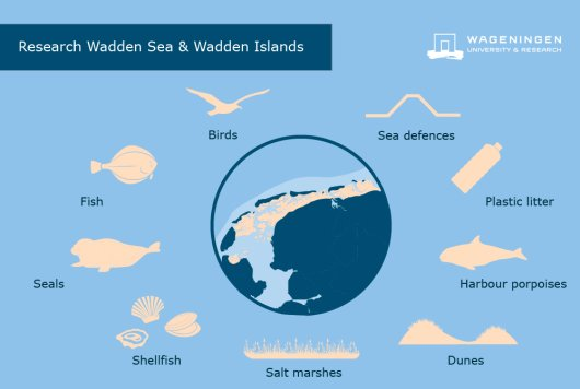 Research Wadden Sea and Wadden islands