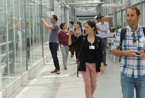 Wageningen Summer School: academic courses about food and living environment for students, academics and professionals